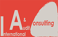 International Audit & Consulting